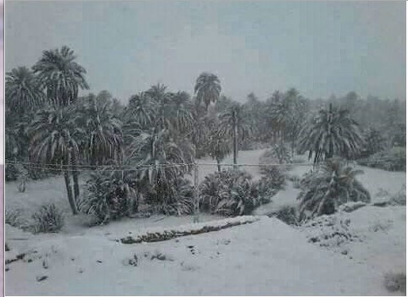 tombe la neige au sahara